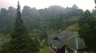 View from the Resort